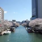 【堀川お花見遊覧】ご予約受付開始しました。